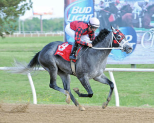Welder was named Horse of the Meet at Will Rogers Downs (Photo by Coady Photography)