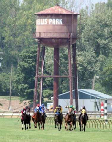 Ellis Park (Photo by Coady Photography)